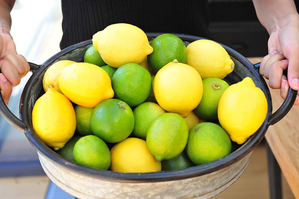 lime-roti-bright-lemons