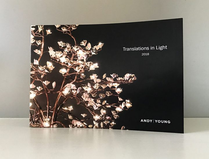 ANDY YOUNG – BROCHURE DESIGN