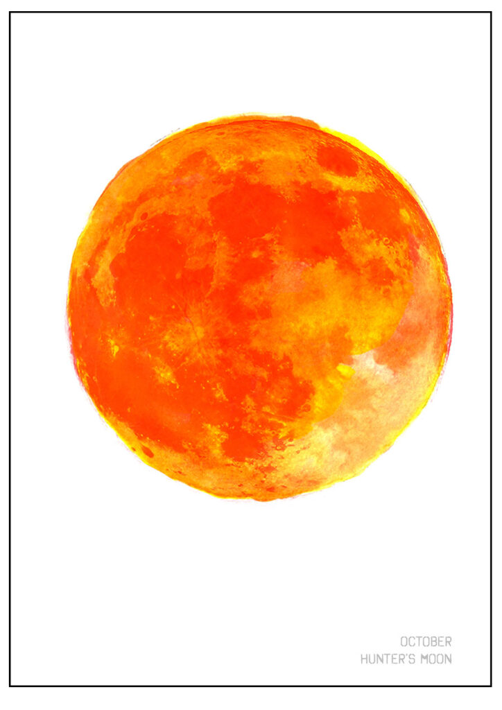 say it with orange